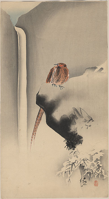 """Pheasant on a Snowy Rock; Waterfall behind"" by Koson"