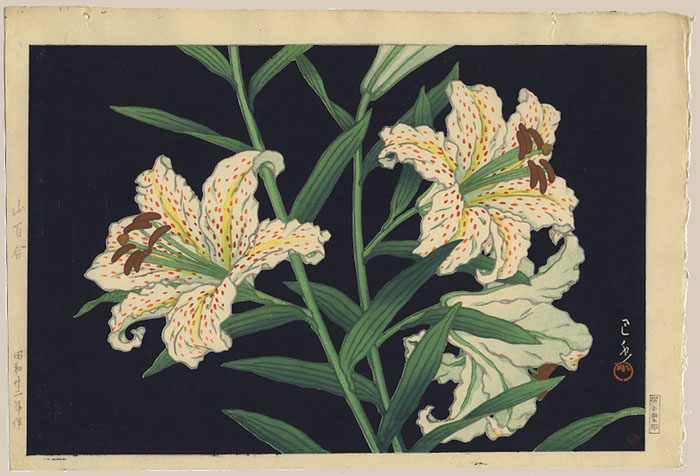 """Golden-banded Lilies"" by Hasui, Kawase"