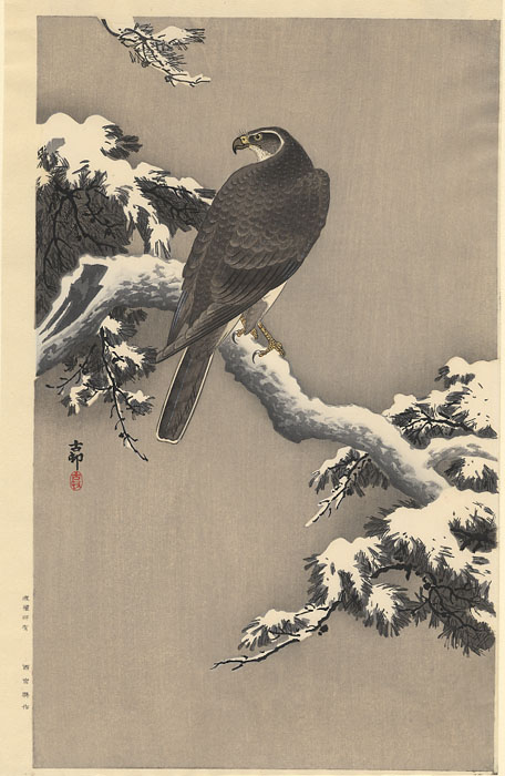 """Gohawk on a Snow Covered Pine Branch"" by Koson"